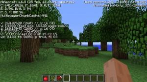 Minecraft164_1